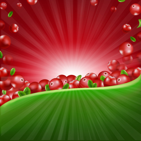 Red Cranberry Border Illustration With Gradient Mesh, Vector Illustration