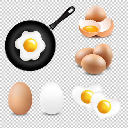 Big Eggs Collection Transparent Background With Gradient Mesh, Vector Illustration