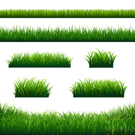 Green Grass Borders Big Set With Gradient Mesh, Vector Illustration