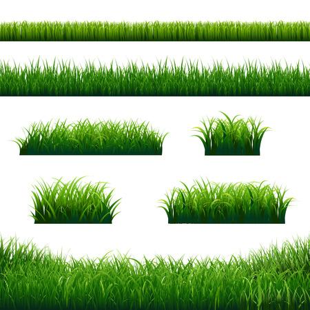 Green Grass Borders Big Set With Gradient Mesh, Vector Illustration