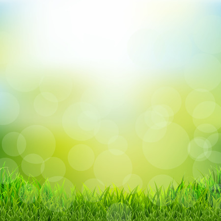 Natural Background With Grass Border, Vector Illustration Vetores