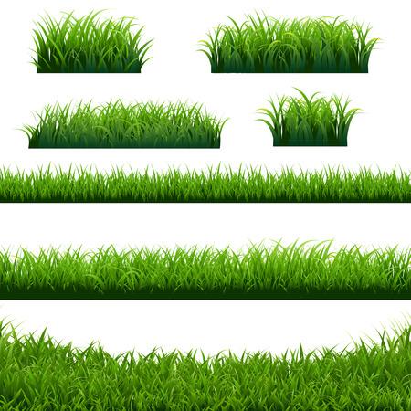Green Grass Borders Big Set, Vector Illustration Stock Illustratie