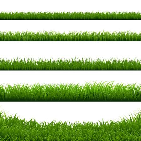 Green Grass Big Borders Collection, Vector Illustration Stock Illustratie