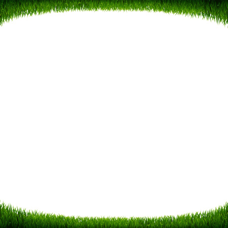 Green Grass Frame White Background With Gradient Mesh, Vector Illustration Ilustração