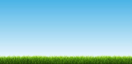 Green Grass Border With Sky, Vector Illustration�¼