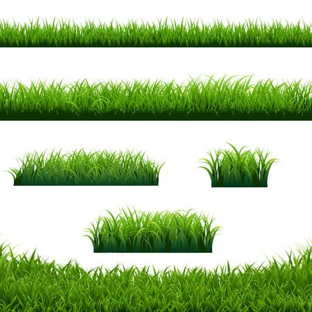 Green Grass Borders Big Set White Background, Vector Illustration Stock Illustratie