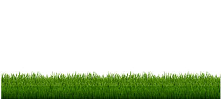 Grass Frame With And White Background, Vector Illustration 版權商用圖片