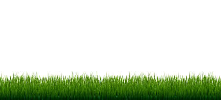 Grass Border Set Isolated White Background, Vector Illustration