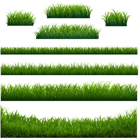 Green Grass Frame With White Background With Gradient Mesh, Vector Illustration 版權商用圖片