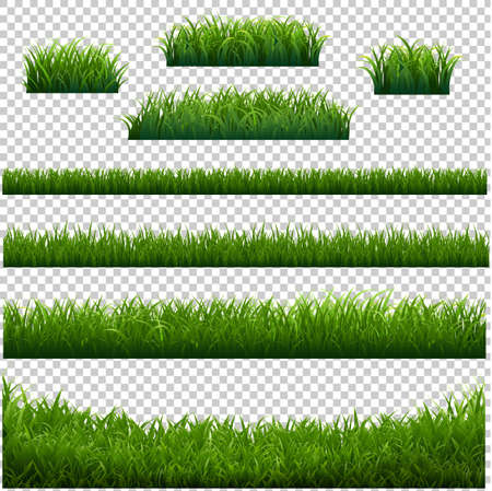 Green Grass Frame With Transparent Background With Gradient Mesh, Vector Illustration