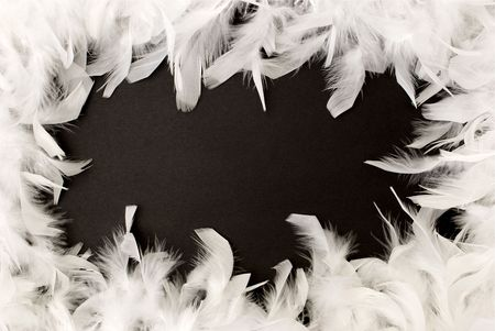 fancy white feather border on a black background