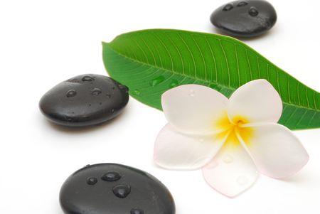 massage stones with frangipani flower and leaf