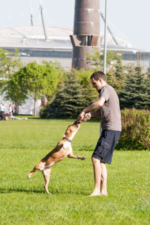 average guy: Sankt-Petereburg, Russia - May 15 2016: the man plays in park with a dog. In St. Petersburg in parks many people walk with the pets