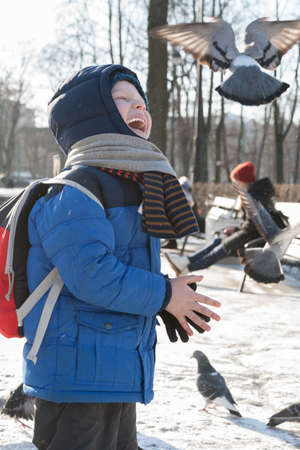 ST. PETERSBURG, RUSSIA - MARCH 05: The child feeds a pigeon from hands,RUSSIA - MARCH 05 2017.In Russia people like to feed wild birds from hands and to look after them.