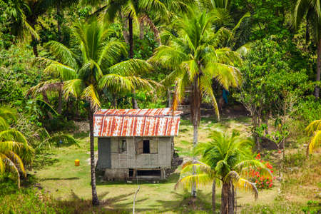 bohol: Panoramic view in Bohol Philippines Stock Photo