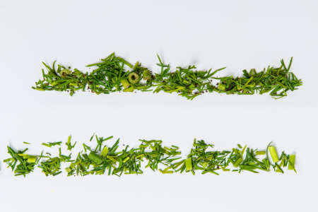 Lines of different herbs on the white table