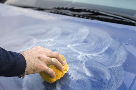 研磨ペーストをスポンジで車のボンネットに適用されます。