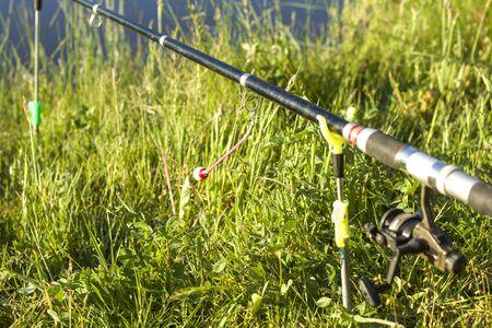 Carp fishing. Angled rod set on racks against a meadow background. 写真素材