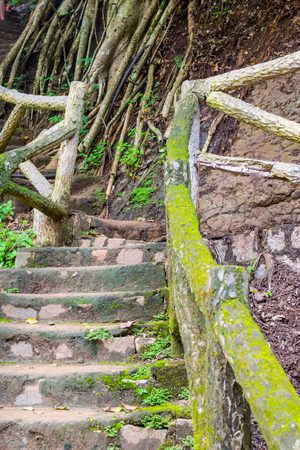 Ladder in tropical mountains with moss with bamboo railings