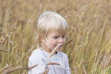 Blond Slavic happy boy at a ripe rye field, autumn harvest, Russia, the Urals
