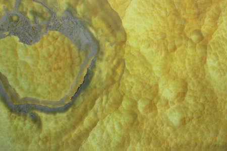 Close up of onyx pattern photo
