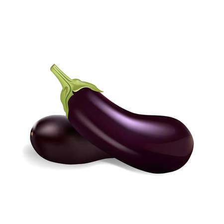 Eggplants isolated on white background, vector illustration.