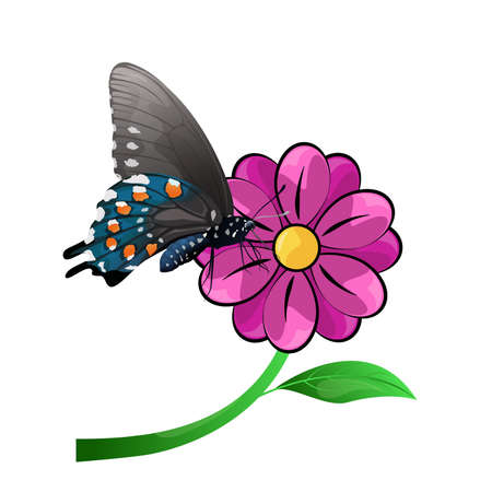 Butterfly and flower isolated on a white background, vector illustration. Illustration