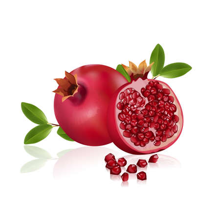 fresh pomegranate fruits isolated on white background. Vitamins and minerals. Healthy concept, vector illustration.