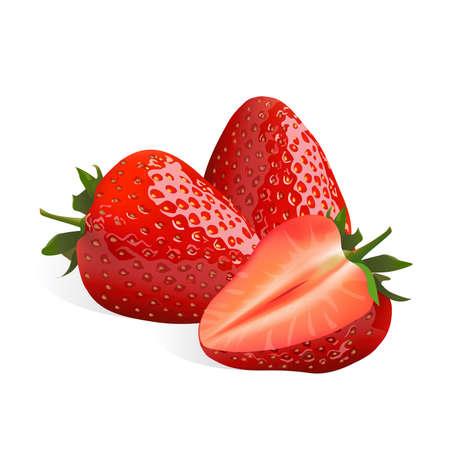 Strawberry isolated on white background, vector illustration. Illustration