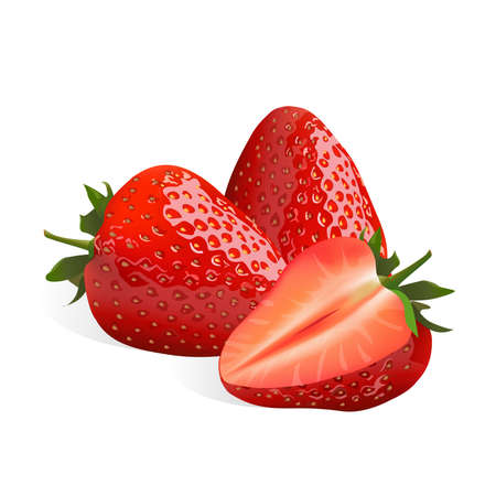 Strawberry isolated on white background, vector illustration. 矢量图像