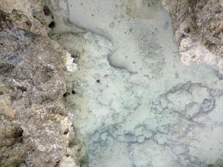 shorelines: clear ocean