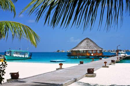 Mavi gökyüzü ile beyaz kum plaj Hindistan cevizi ağaçları ve kanepeler Peyzaj fotoğraf