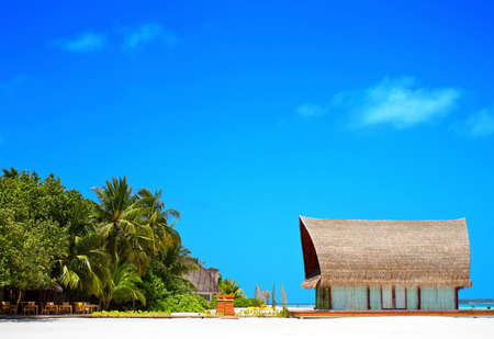 Landscape photo of Coconut trees and couches on white sand beach with blue sky Stock Photo
