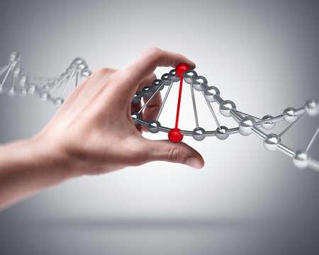 spirale dna: Mano capsula partecipazione dell'uomo con il DNA del campione Archivio Fotografico