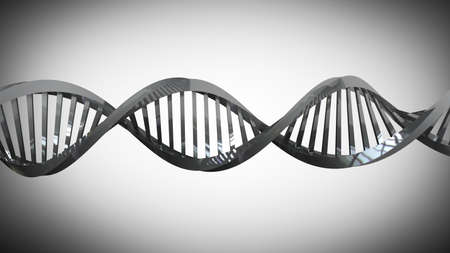 cromosoma: modelo de trenzado de metal cromado de ADN de cadena 3d de alta resolución Foto de archivo
