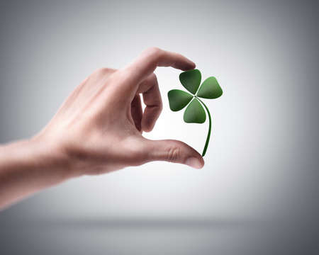 Mans hand holding green clover photo