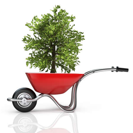 Concept. Red wheelbarrow with green tree isolated on white background High resolution 3d  photo
