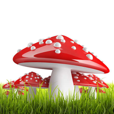 Red poison mushroom isolated on white background High resolution 3d  photo