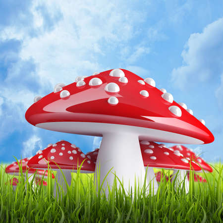 Red poison mushroom High resolution 3d  photo
