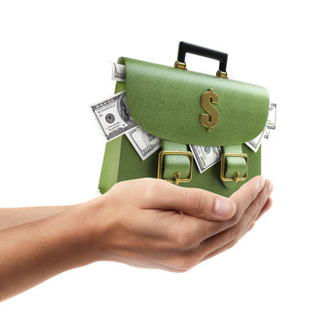 brief case: Man hand holding object ( Green leather briefcase with dollars )  isolated on white background. High resolution