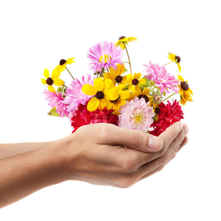 Man hand holding object ( beautiful color flowers )  isolated on white background. High resolution