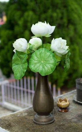 White lotus flower in a vase photo