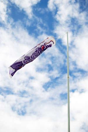 Japanese koi carp wind socks blow in the wind photo