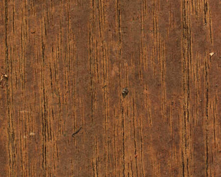 wood texture background: Wood Background wood texture