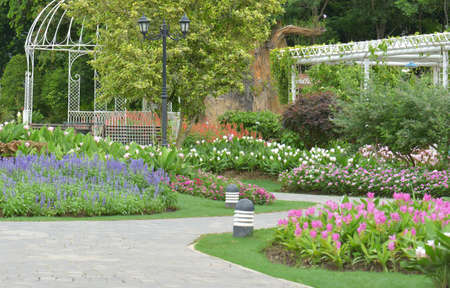 landscaped garden: Colourful Flowers in the garden