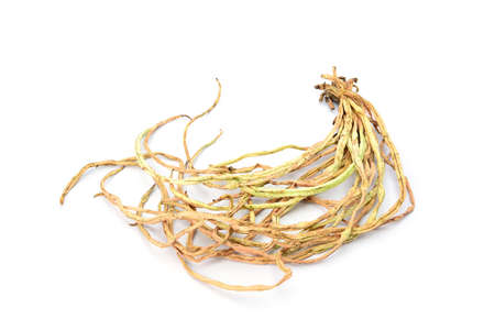 dry cow: dry cow pea isolated on white background Stock Photo