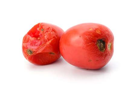 putrid: rotten tomato isolated on white background