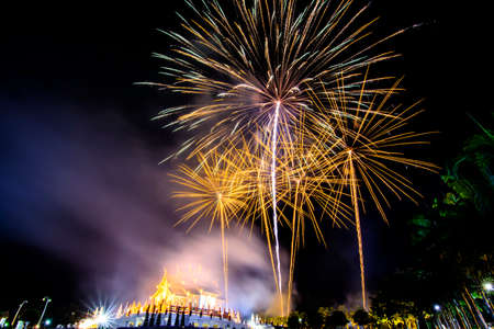 fires artificial: blur fireworks festival  in the night sky