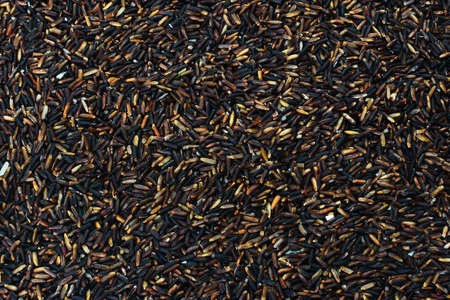 black berry: black rice Rice berry background Stock Photo