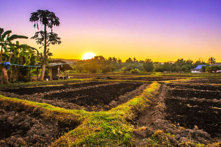 landscape agricultural field arable land